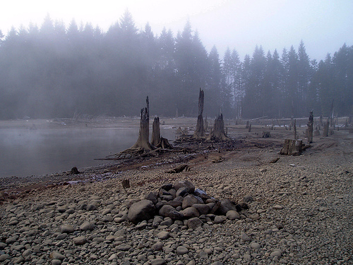Comox Lake in fog #1437