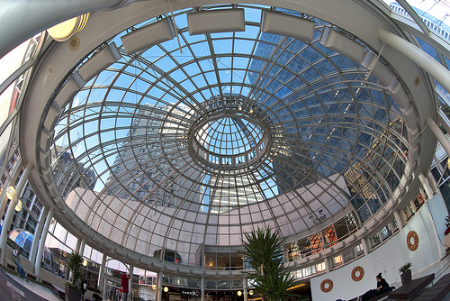 Pacific Center Fish-eye